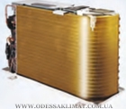 Sinclair Golden Fin